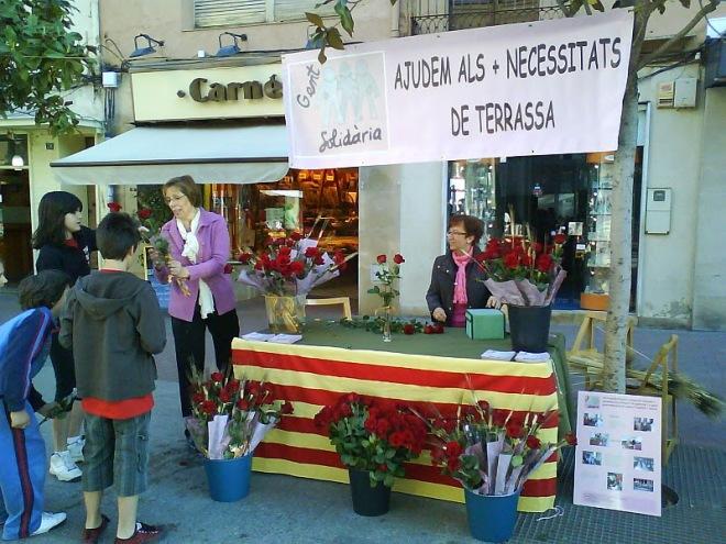 Imatge de Sant Jordi 2009